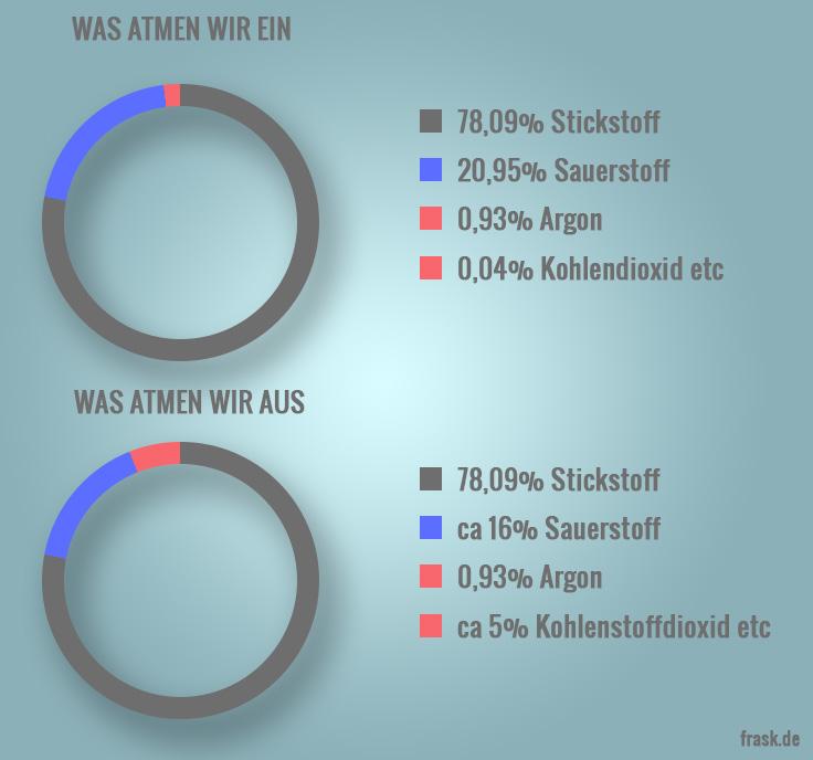 fettverbrennung_atem_infografik