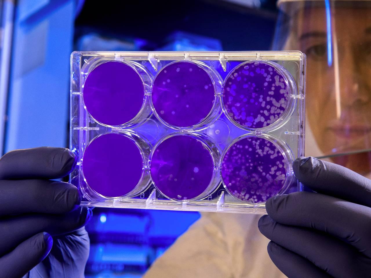 coronavirus symptome atemschutzmaske